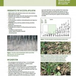 Inspiration Sheet: Flex-tine weed harrowing in spring cereals