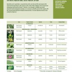 Inspiration Sheet: Important weeds in olive orchards in northern and southern Spain