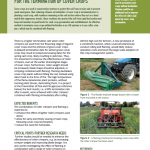 Inspiration Sheet: Combining roller crimper and flaming for the termination of cover crops