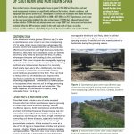 Inspiration Sheet: Cover crops in olive-field trials of southern and northern Spain