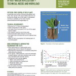 Inspiration sheet: Killing Rumex L. by hot-water application - Technical needs and workload